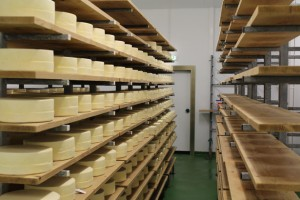 Portiso in the new Trethowan Dairy cheese factory in Somerset (UK)
